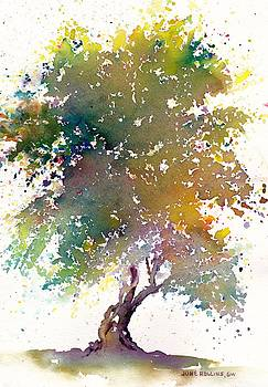 Autumn Blush by June Rollins