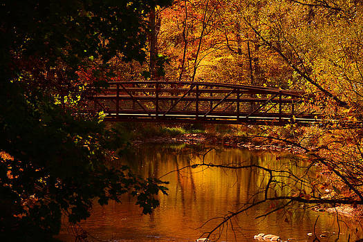 Raymond Salani III - Autumn Bridge