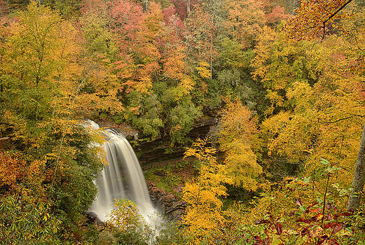Autumn Burst by Eric Haggart