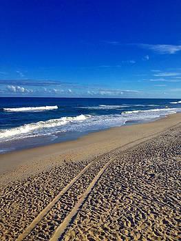 Autumn Carolina Beach by Joan Meyland
