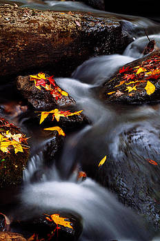 Autumn Cascade by Jeff Rose