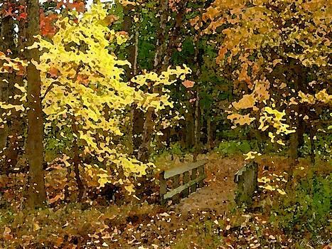 Autumn Color by Cole Black