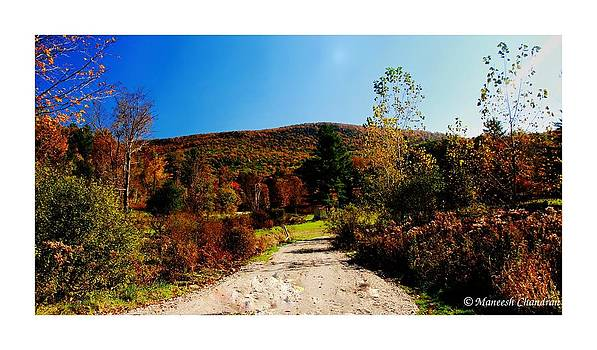Autumn Colors by Maneesh Chandran