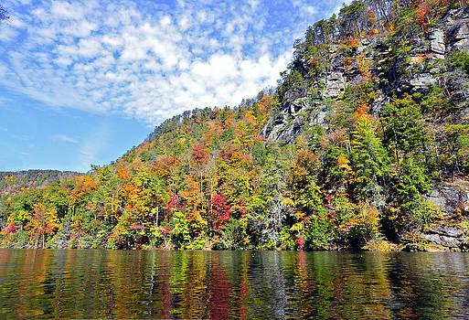 Autumn Colors on a Lake by Susan Leggett