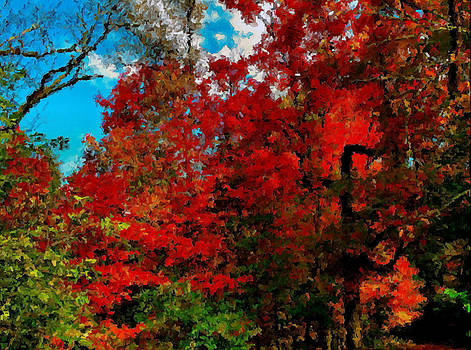 Autumn colors by Slawek Sepko