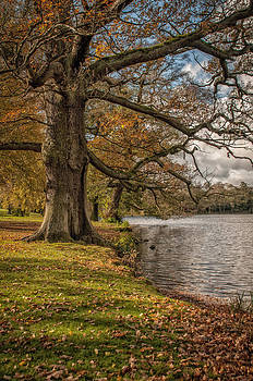 Autumn Colours by Darren Marshall