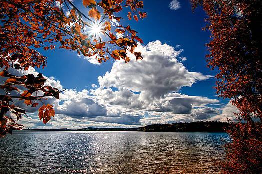 Autumn  Confidential  by Bob Orsillo