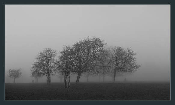 Autumn Dense Fog by Maj Seda