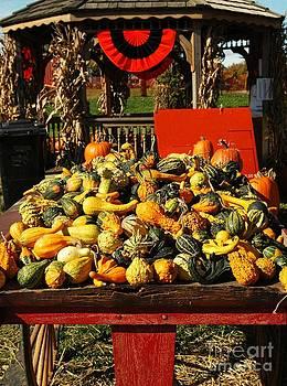 Autumn Display by Kathleen Struckle