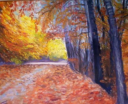 Autumn by Elena Sokolova