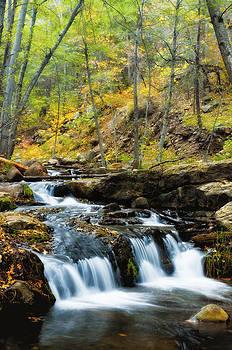 Saija  Lehtonen - Autumn Falls