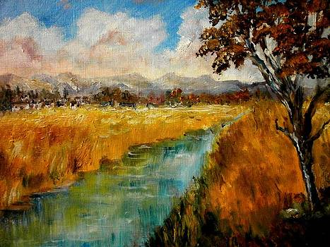 Autumn fields by Constantinos Charalampopoulos