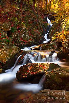 Autumn Flow by Everett Houser