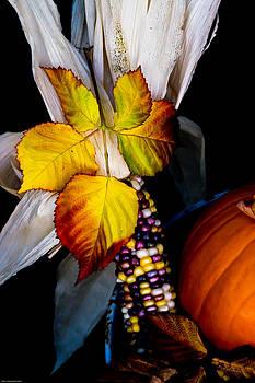 Mick Anderson - Autumn Harvest Still Life
