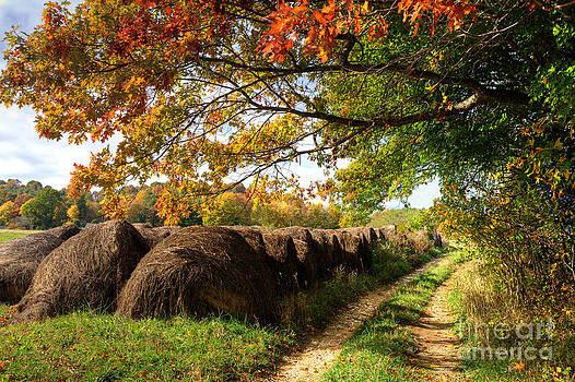 Dan Carmichael - Autumn Hay Bales Blue Ridge Mountains I