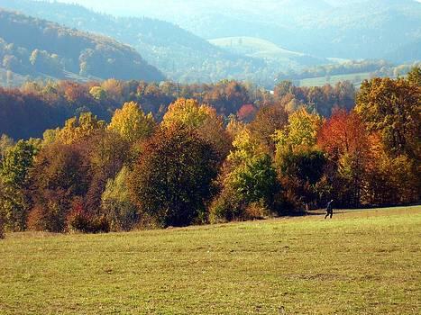 Autumn by Ignatescu Isabela