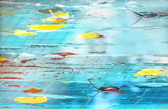 Autumn II by Alfonso Garcia