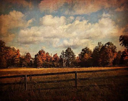 Pamela Phelps - Autumn in Everything