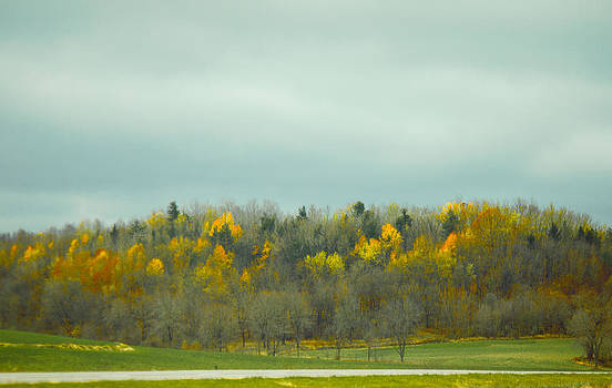 Autumn In Ohio by Princess Kidwell