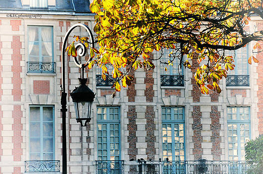 Autumn in Paris by Karen Camilleri