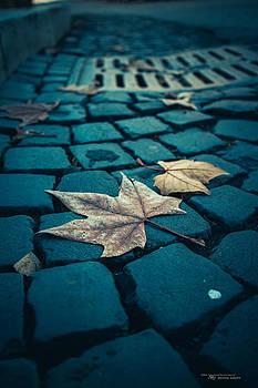 Autumn in Roma by Dustin Abbott
