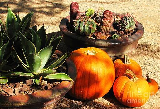 Marilyn Smith - Autumn In The Desert