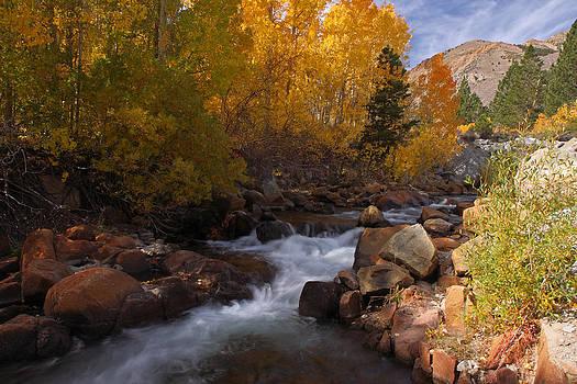 Autumn in the Eastern Sierra by Steve Wolfe
