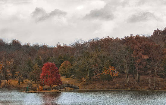 Autumn in the Rain by Katie Abrams