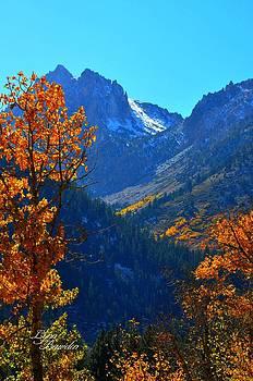 Lynn Bawden - Autumn in the Sierras