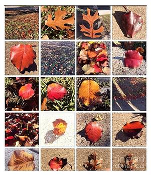 Autumn Leaves Collection by Mischa Art and More