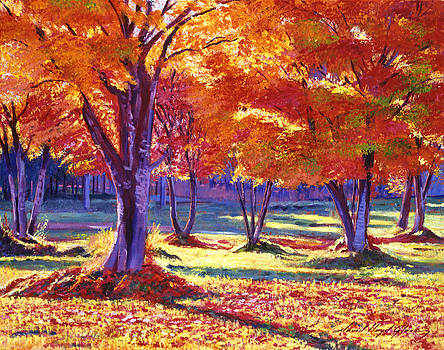 David Lloyd Glover - Autumn Leaves