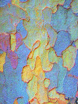 Margaret Saheed - Autumn London Plane Tree Abstract 4