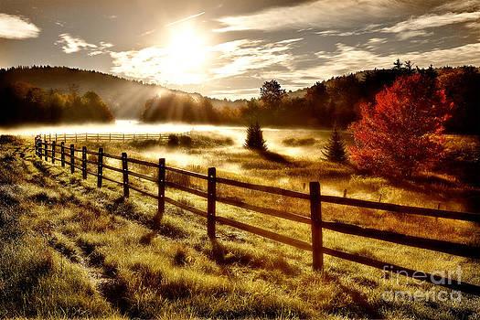 Dan Carmichael - Autumn Meadow Sunrise II - West Virginia