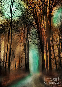 Autumn moon winter on the way by Gina Signore