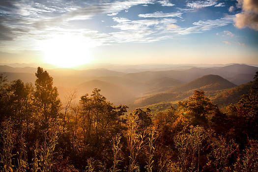 Autumn Morning by Lynne Jenkins