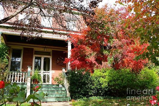 Autumn Neighbors by Jay Nodianos