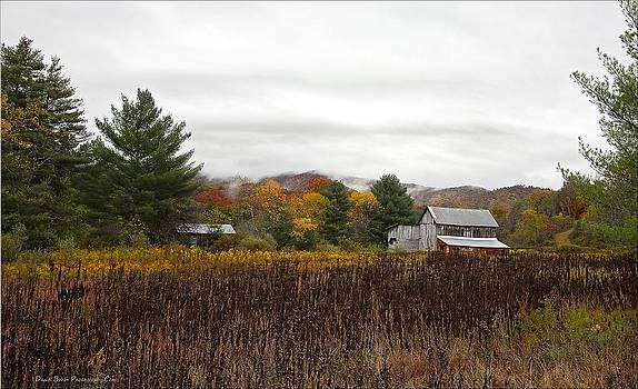 Autumn on the farm by Daniel Behm