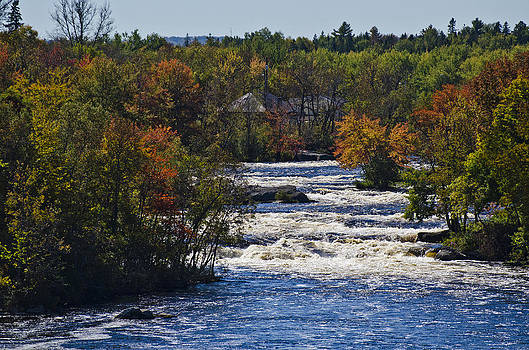 Autumn on the River by Roger Lewis