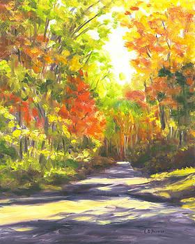 Autumn Path Shadows by Elaine Farmer