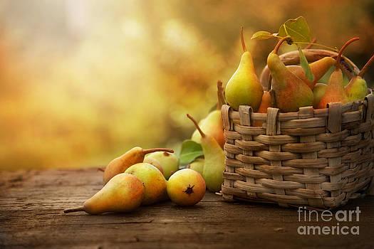 Mythja  Photography - Autumn pears