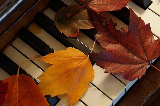 Mick Anderson - Autumn Piano 2