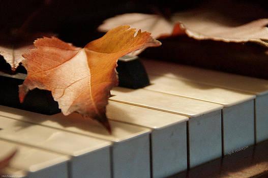 Mick Anderson - Autumn Piano 4