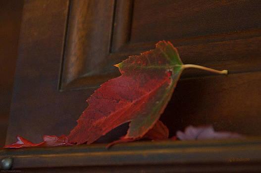 Mick Anderson - Autumn Piano 5