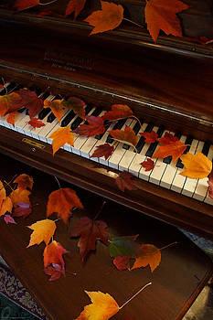 Mick Anderson - Autumn Piano 7