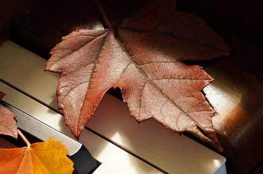 Mick Anderson - Autumn Piano 8