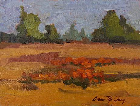 Diane McClary - Autumn Poppy Field