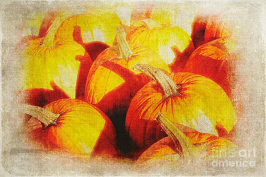 Dan Carmichael - Autumn Pumpkins - Blue Ridge Parkway