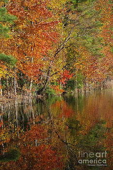 Tannis  Baldwin - Autumn Reflection 1