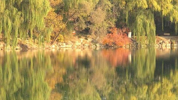 Alfred Ng - autumn reflection