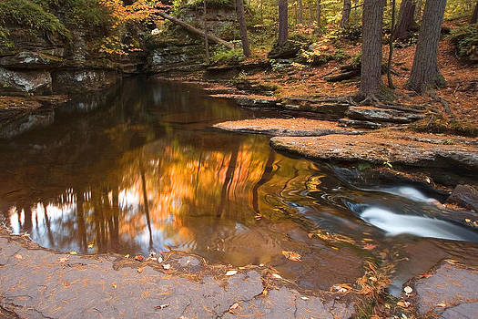 Autumn Reflection At The Top of Adams Falls by Gene Walls